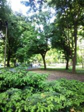 Central_park2ncm_0677